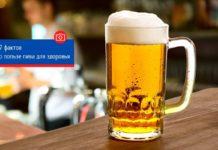 7 фактов о пользе пива для здоровья