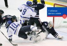 5 забавных фактов о хоккее